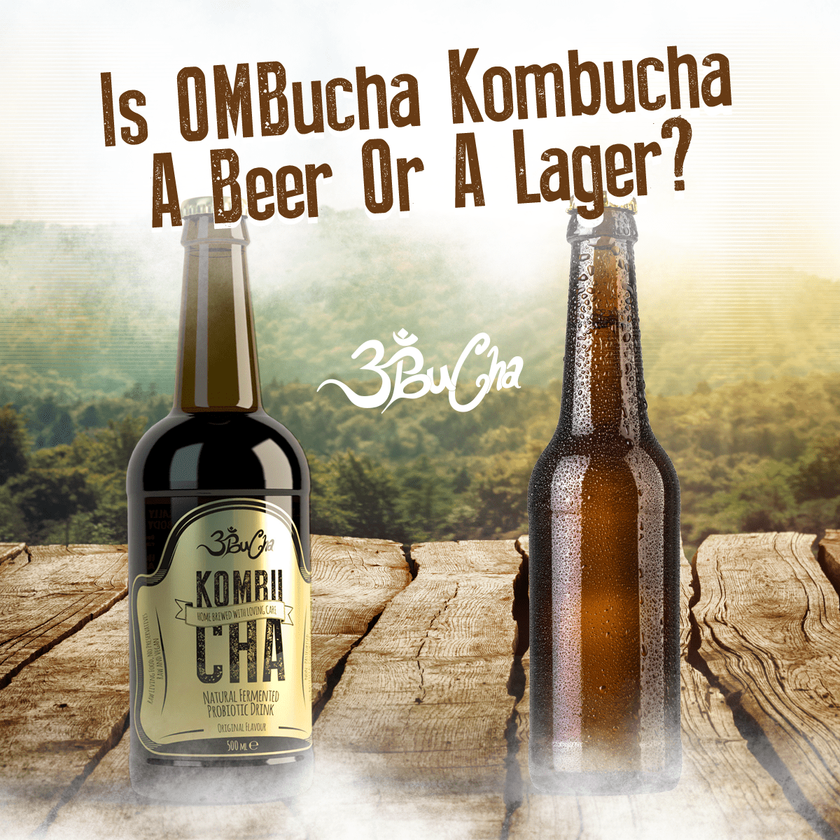 is kombucha a beer or a lager