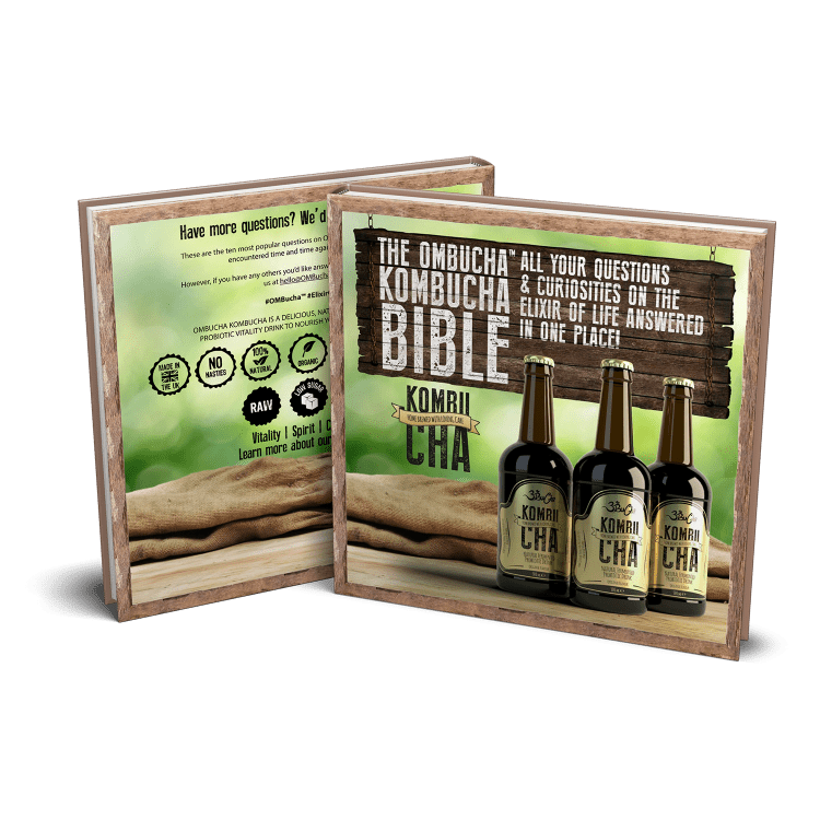 Kombucha Bible eBook
