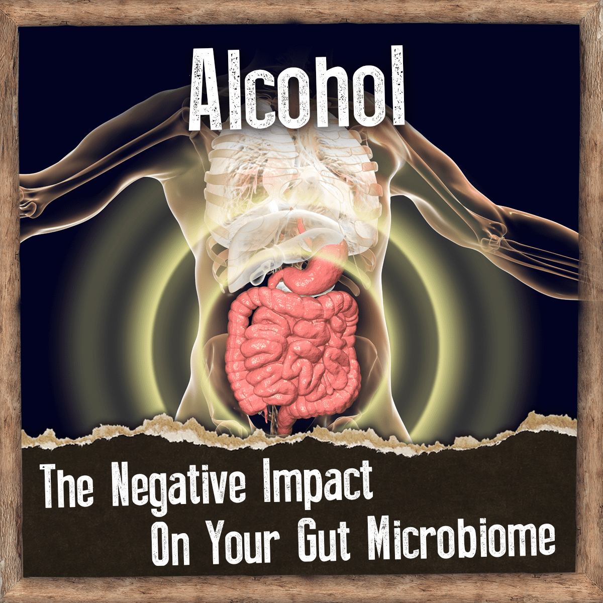 alcohol negative effect on the gut microbiome