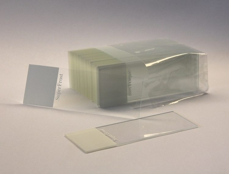 Microscope slides - for viewing spores for microscopy use (x10)